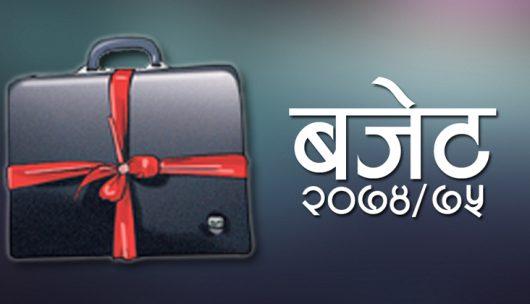 Budget-2074-530x304