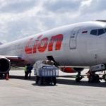 Lion-flight-plane